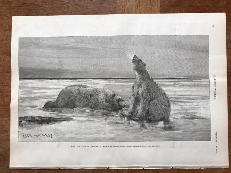 BY F CHURCH F ENGRAVING CHURCH S POLAR BEARS ON THE ICE S DESOLATION